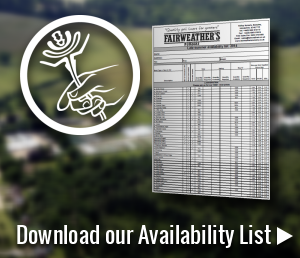 Download our wholesale plants availability list